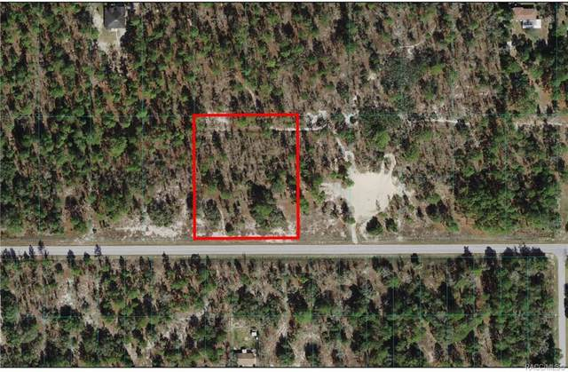 Lots 36 & 37 SW Marine Boulevard, Dunnellon, FL 34431 (MLS #801414) :: Plantation Realty Inc.