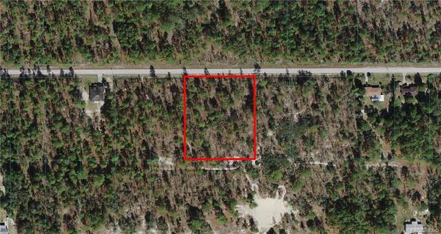 Lots 11 & 12 SW Anchor Boulevard, Dunnellon, FL 34431 (MLS #801433) :: Plantation Realty Inc.