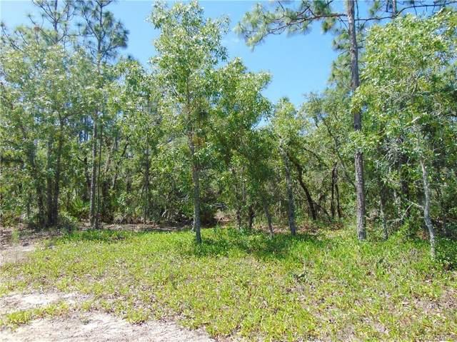 3076 N Stirrup Drive, Beverly Hills, FL 34465 (MLS #801440) :: Plantation Realty Inc.