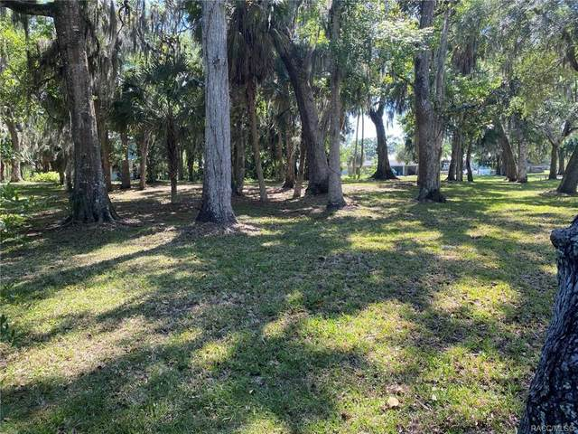 570 NW 14th Place, Crystal River, FL 34428 (MLS #801441) :: Plantation Realty Inc.