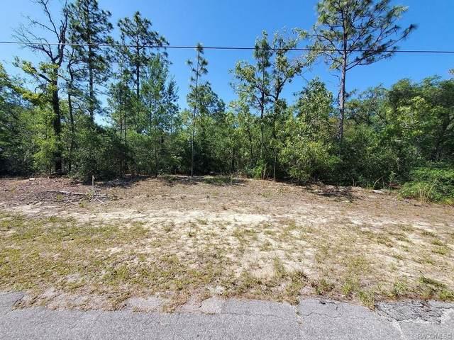 3906 W Findlay Street, Citrus Springs, FL 34433 (MLS #801444) :: Pristine Properties