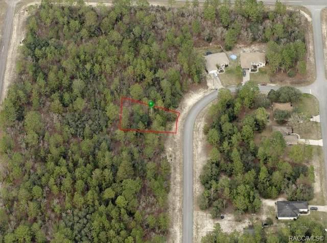 3915 W Wilburton Drive, Citrus Springs, FL 34433 (MLS #801468) :: Plantation Realty Inc.