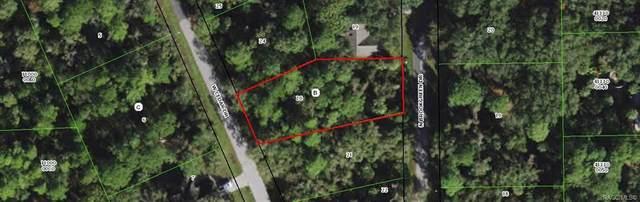 5650 N Brookgreen Drive, Crystal River, FL 34428 (MLS #801502) :: Plantation Realty Inc.