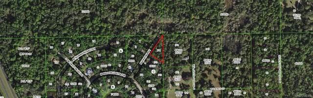 5975 N Varina Point, Crystal River, FL 34428 (MLS #801506) :: Plantation Realty Inc.