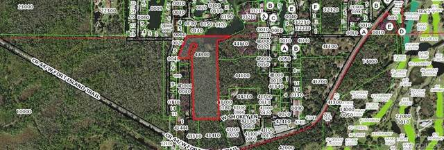 873 N Michael Brunn Point, Crystal River, FL 34429 (MLS #801547) :: Plantation Realty Inc.