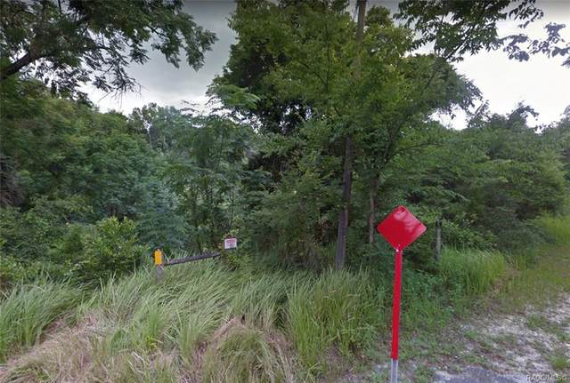 222 S Leona Avenue, Lecanto, FL 34461 (MLS #801569) :: Plantation Realty Inc.