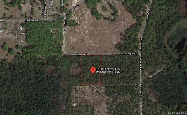 121 Bluberry Hill Street, Pomona Park, FL 32181 (MLS #801571) :: Plantation Realty Inc.