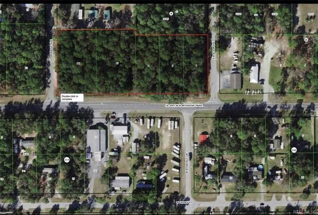 6485 W Homosassa Trail, Homosassa, FL 34448 (MLS #801675) :: Plantation Realty Inc.