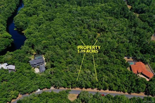 10464 N Natchez Loop, Dunnellon, FL 34434 (MLS #801740) :: Plantation Realty Inc.