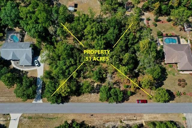 2489 E Celina Street, Inverness, FL 34453 (MLS #801744) :: Plantation Realty Inc.