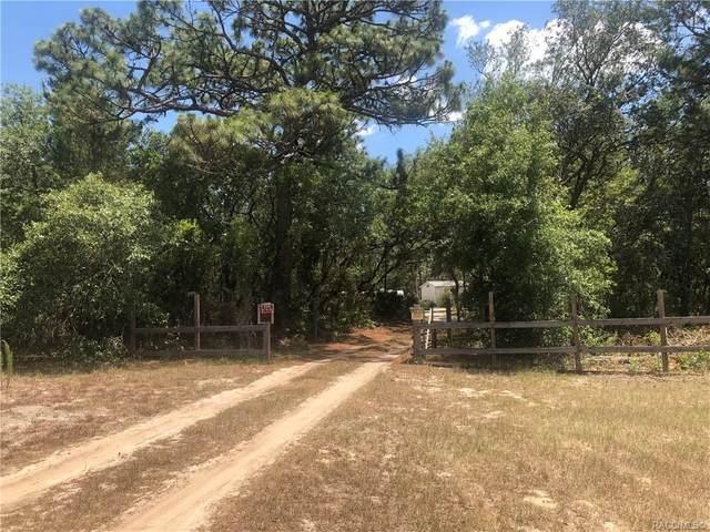 3299 S Legette Point, Lecanto, FL 34461 (MLS #801769) :: Plantation Realty Inc.