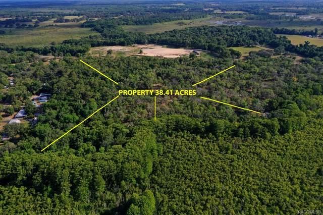 9855 E Bushnell Road, Floral City, FL 34436 (MLS #801777) :: Plantation Realty Inc.