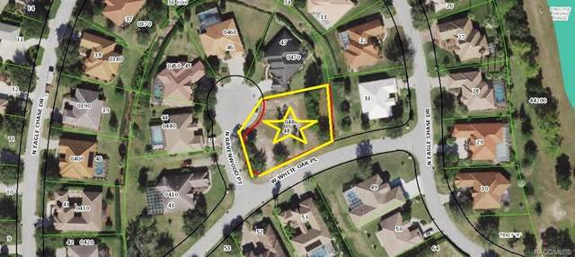 1865 N Ravenwood Point, Hernando, FL 34442 (MLS #801793) :: Plantation Realty Inc.