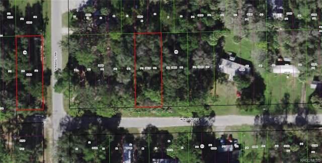 1590 W Attucks Lane, Dunnellon, FL 34434 (MLS #801814) :: Plantation Realty Inc.