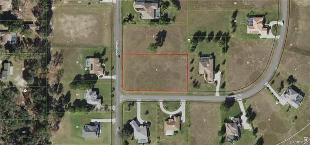 263 N Man O War Drive, Inverness, FL 34453 (MLS #801816) :: Plantation Realty Inc.