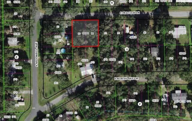 7960 E Peacock Lane, Floral City, FL 34436 (MLS #801852) :: Plantation Realty Inc.