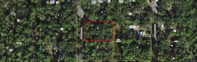 8831 N Maple Avenue, Crystal River, FL 34428 (MLS #801880) :: Plantation Realty Inc.