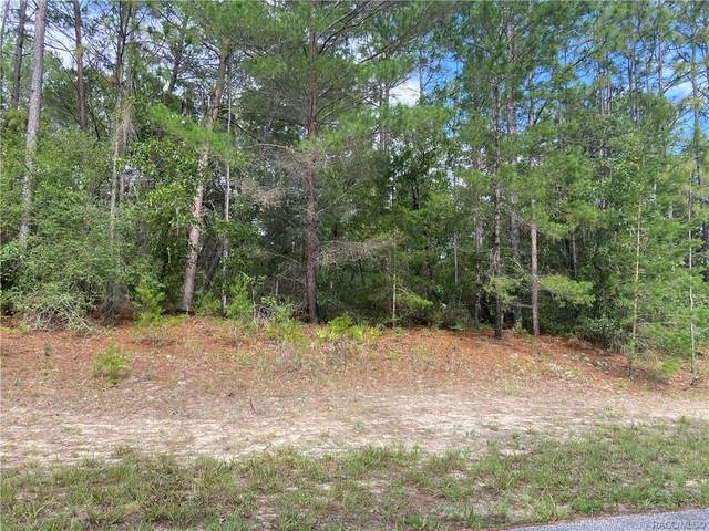 7121 N Tranquil Drive, Dunnellon, FL 34434 (MLS #801897) :: Plantation Realty Inc.
