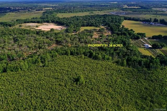 9701 E Bushnell Road, Floral City, FL 34436 (MLS #801908) :: Plantation Realty Inc.