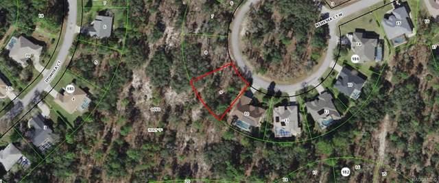 15 Nemesia Court W, Homosassa, FL 34446 (MLS #801930) :: Plantation Realty Inc.