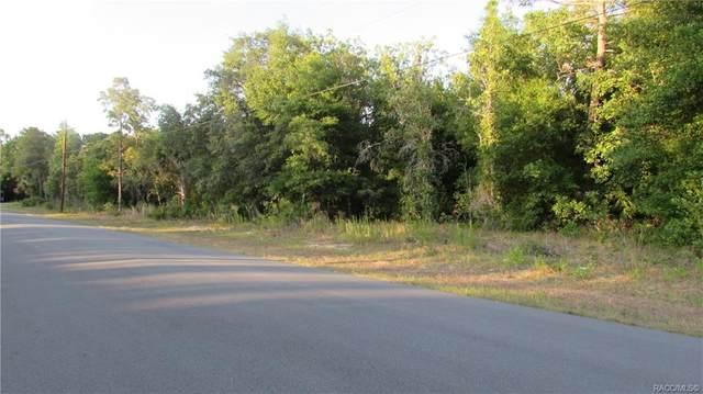 6775 S Sorrell Avenue, Homosassa, FL 34446 (MLS #801941) :: Plantation Realty Inc.