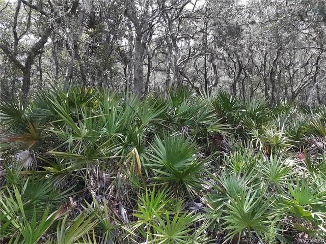 12365 Riverwood Drive, Crystal River, FL 34428 (MLS #801958) :: Plantation Realty Inc.