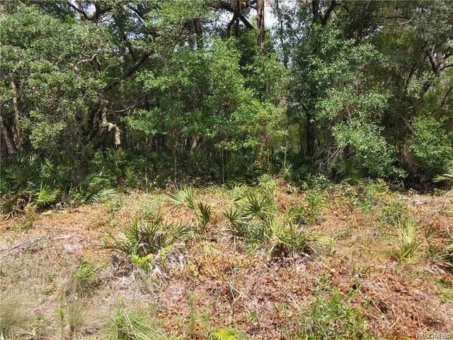 4632 N Hidden Oaks Way, Crystal River, FL 34428 (MLS #802071) :: Plantation Realty Inc.