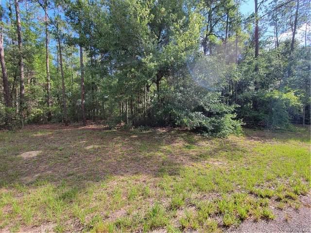 199 E Simms Lane, Citrus Springs, FL 34434 (MLS #802186) :: Plantation Realty Inc.