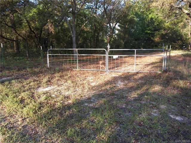 7233 S Sunnyview Point, Homosassa, FL 34446 (MLS #802256) :: Plantation Realty Inc.