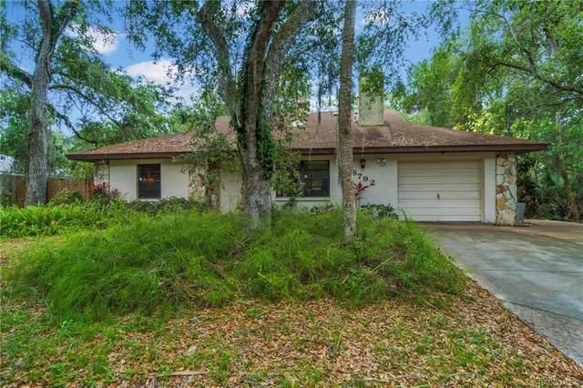 6792 S Holly Oak Point, Homosassa, FL 34448 (MLS #802272) :: Plantation Realty Inc.