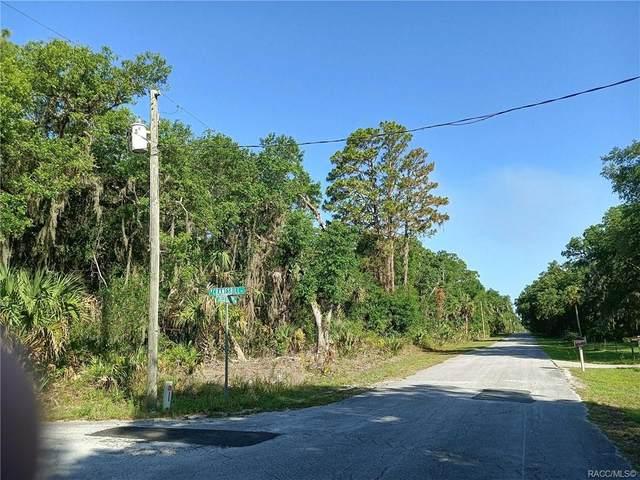 12392 W Checkerberry Drive, Crystal River, FL 34428 (MLS #802287) :: Plantation Realty Inc.