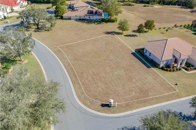 1569 N Mccovey Point, Hernando, FL 34442 (MLS #802295) :: Plantation Realty Inc.