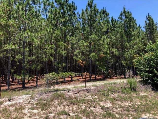 6388 N Citrus Avenue, Crystal River, FL 34428 (MLS #802334) :: Plantation Realty Inc.
