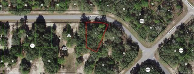 1404 W Dolores Drive, Citrus Springs, FL 34434 (MLS #802385) :: Plantation Realty Inc.