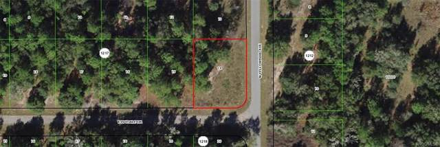1849 E Ivydale Drive, Citrus Springs, FL 34434 (MLS #802388) :: Plantation Realty Inc.