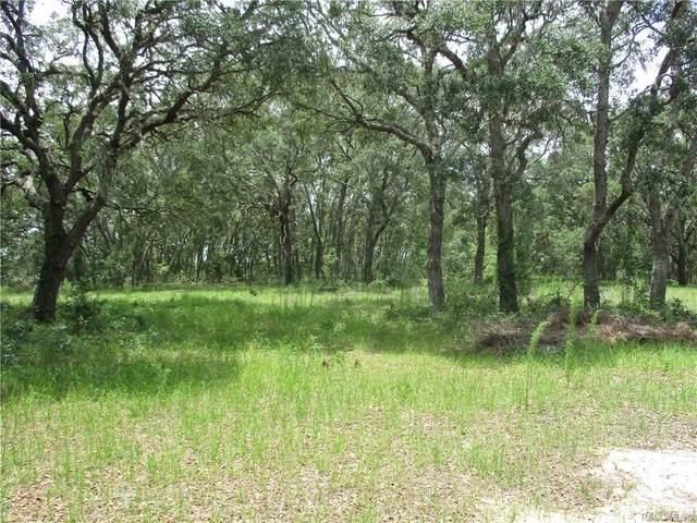 5968 S Hilltop Road, Homosassa, FL 34446 (MLS #802392) :: Plantation Realty Inc.