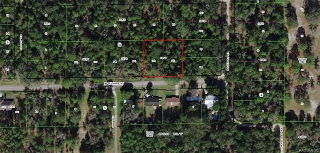 7081 W Leisure Street, Dunnellon, FL 34433 (MLS #802405) :: Plantation Realty Inc.