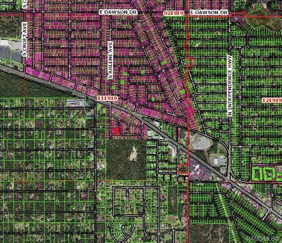 996 S Sally Terrace, Inverness, FL 34452 (MLS #802463) :: Plantation Realty Inc.