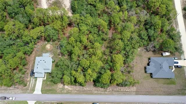 10401 Spalding Street, Brooksville, FL 34614 (MLS #802474) :: Plantation Realty Inc.