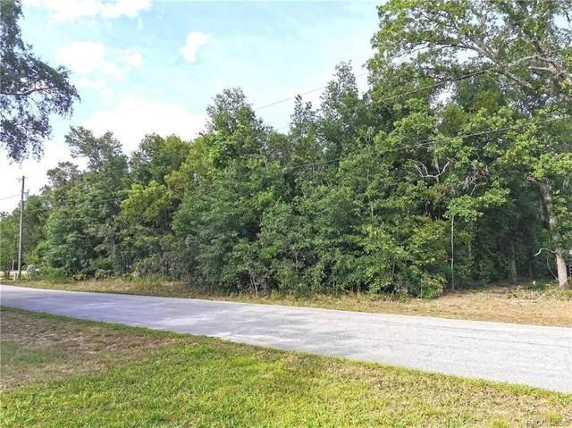 4067 S Gate Point, Homosassa, FL 34446 (MLS #802505) :: Pristine Properties