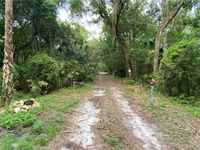 9301 W Tall Pines Court, Crystal River, FL 34428 (MLS #802508) :: Plantation Realty Inc.