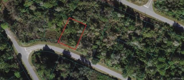 000 Oak Lane Loop, Oklawaha, FL 32179 (MLS #802545) :: Pristine Properties