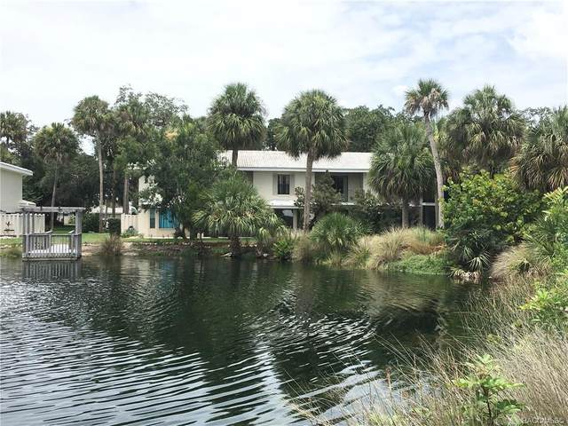 1266 N Seagull Point, Crystal River, FL 34429 (MLS #802552) :: Pristine Properties