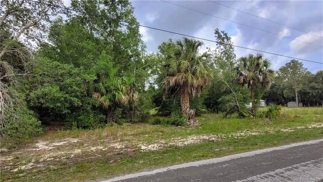 8053 N Ira Martin Avenue, Crystal River, FL 34428 (MLS #802553) :: Pristine Properties