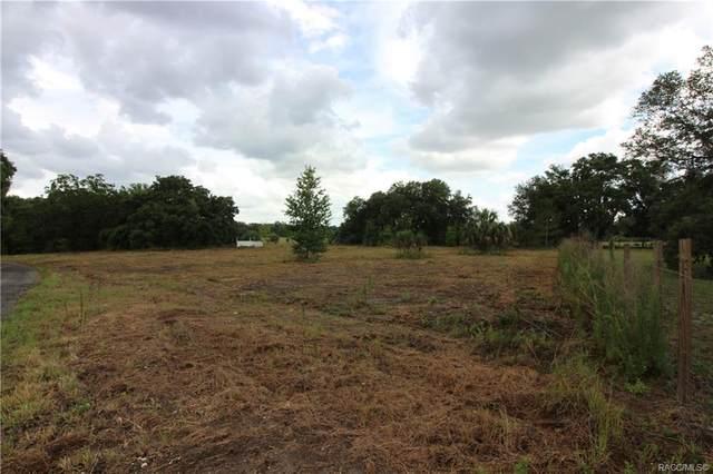 8892 W Bass Lake Road, Crystal River, FL 34428 (MLS #802562) :: Pristine Properties