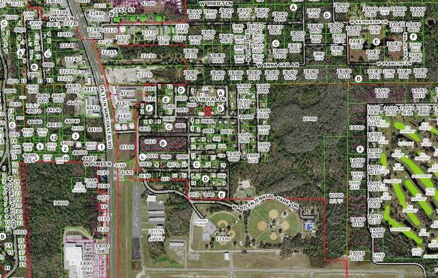 8435 W Admiral Byrd Lane, Crystal River, FL 34429 (MLS #802569) :: Pristine Properties