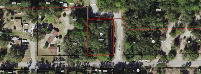 00 NE 6th Avenue, Crystal River, FL 34428 (MLS #802571) :: Pristine Properties