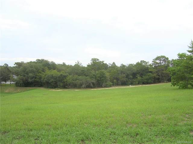 1371 E Triple Crown Loop, Hernando, FL 34442 (MLS #802789) :: Plantation Realty Inc.