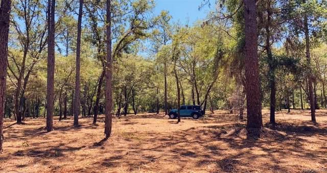 11900 S Pine Oak Terrace, Floral City, FL 34436 (MLS #802805) :: Plantation Realty Inc.