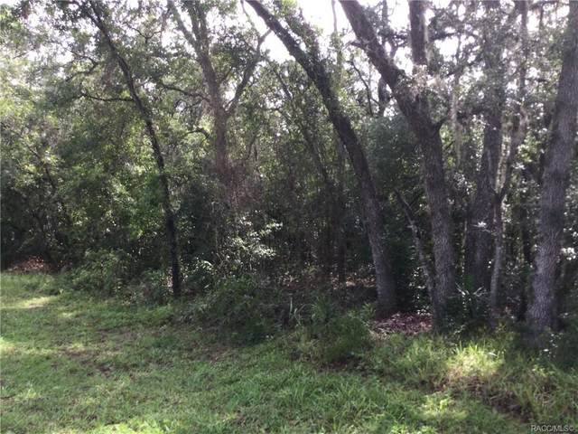 727 N Seton Avenue, Lecanto, FL 34461 (MLS #802825) :: Plantation Realty Inc.